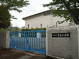 豊富小学校