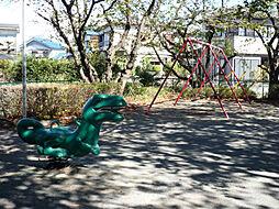 近隣の公園(遊...