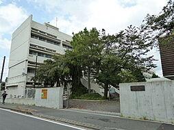 狛江第二中学校
