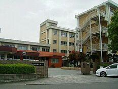 中学校紀ノ川中学校まで619m