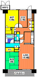 ライオンズマンション上野芝5丁[605号室]の間取り