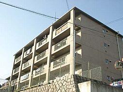 マンション紫明園[4階]の外観