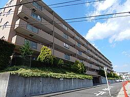 ルピナス生田