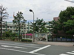 区立加計塚小学...
