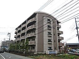コンドミニアム都麗殷[4階]の外観
