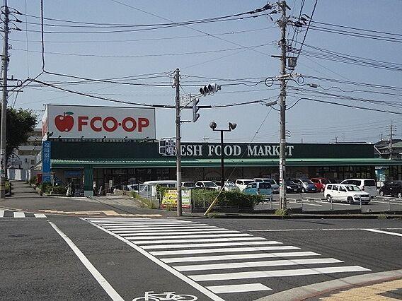 FCO OP折...