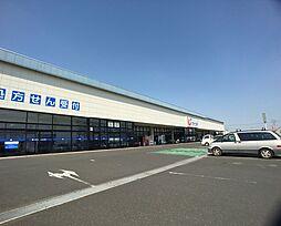 カワチ竜ケ崎店...