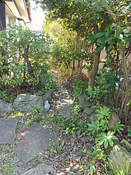 緑あるお庭です