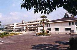 小金北中学校