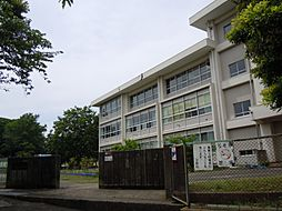 高坂小学校まで...