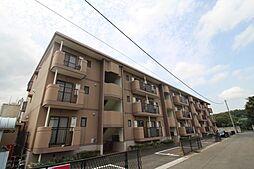 埼玉県新座市西堀2丁目の賃貸マンションの外観