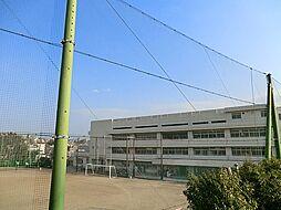 中学校平戸中学...