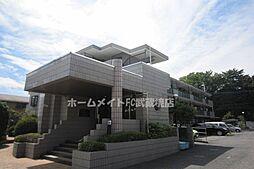 フラットテン向台弐番館 11a[1階]の外観