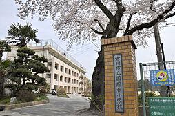 国府台小学校