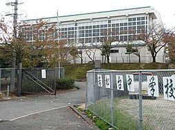 若松台中学校 ...