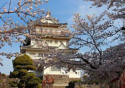亥鼻公園の桜は...