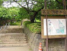 公園羽根木公園まで1177m