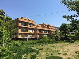 ライオンズマンション聖蹟桜ヶ丘