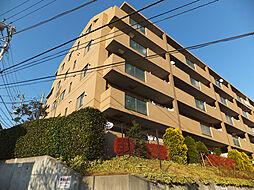 ルピナス生田 403