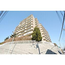 埼玉県川越市仙波町3丁目の賃貸マンションの外観