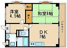 兵庫県伊丹市桜ケ丘4丁目の賃貸マンションの間取り