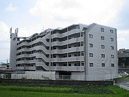 アルフィーネ大野城[1階]の外観