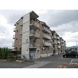カーサNAKAMURA[1階]の外観