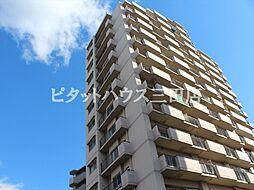 アミル21・サルビア館[8階]の外観