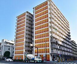 カーサ第2亀戸 3号棟 8階