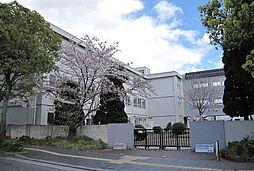 虹ケ丘マンション[3-A号室]の外観