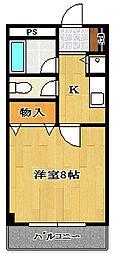 千葉県船橋市日の出2丁目の賃貸マンションの間取り