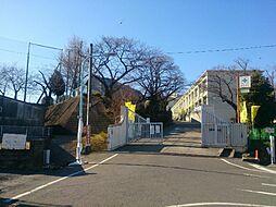山口中学校