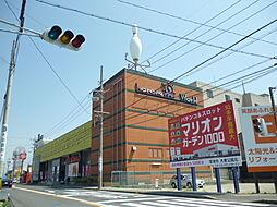 コロナ半田店