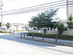 熊取町立中央小...