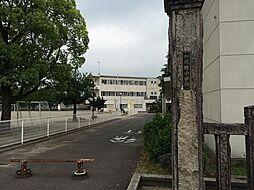 加茂野小学校