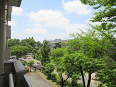 北側バルコニーからの眺望