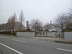 学区:千代川中...