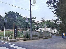 坪井中学校 1...