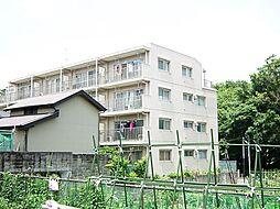 東京都板橋区徳丸7丁目の賃貸マンションの外観