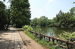 石神井公園徒歩...