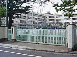 中学校梅丘中学...