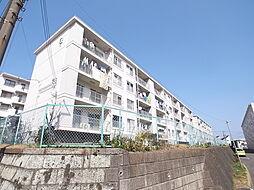 東芝杉田コーポC棟