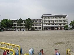 下米田小学校