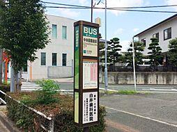 豊鉄バス「中央...