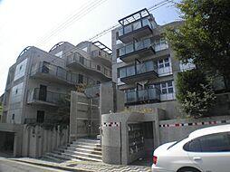 芦屋レグノ[4階]の外観