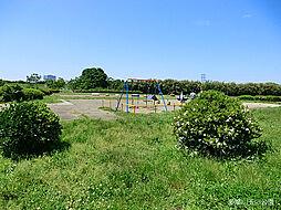 公園多摩川玉川...