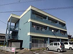 愛知県一宮市東五城字古川の賃貸マンションの外観