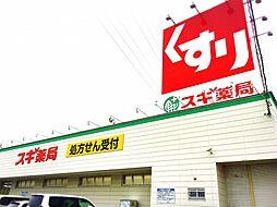 スギ薬局幡豆店...