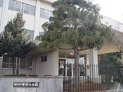 金勝小学校