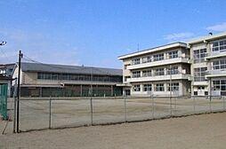 学区:植田中学...